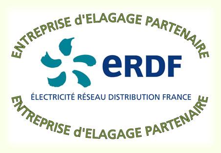 Entreprise d'élagage partenaire ERDF
